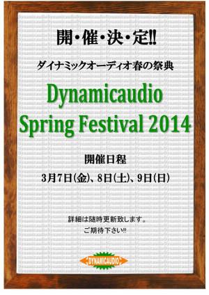 Dsf2014_web