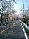 Photo_515